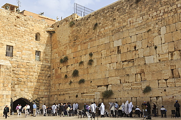 Men's Section, Western (Wailing) Wall, Temple Mount, Old City, Jerusalem, UNESCO World Heritage Site, Israel, Middle East