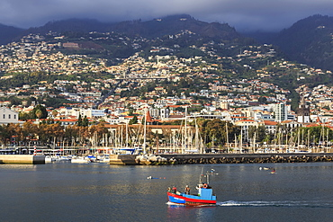 Funchal town from sea with fishing boat, lit by evening sun with foggy mountain backdrop, Funchal, Madeira, Atlantic, Portugal, Europe