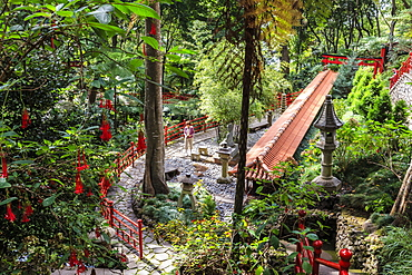 Oriental garden, Monte Palace Tropical Garden, one of Madeira's most famous, Monte, Funchal, Madeira, Atlantic, Portugal, Europe