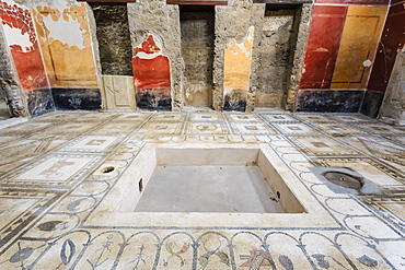 Mosaics, Atrium, House of the Paquius Proculus (House of Cuspius Pansa), Pompeii, UNESCO World Heritage Site, Campania, Italy, Europe