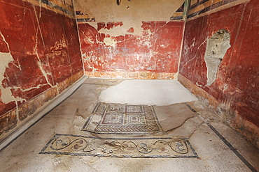 Mosaics, House of the Paquius Proculus (House of Cuspius Pansa), Roman Pompeii, UNESCO World Heritage Site, Campania, Italy, Europe