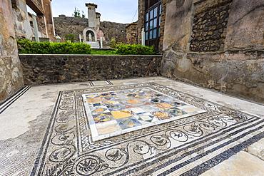 Mosaic, House of Marcus Lucretius in Via Stabiana, Roman Pompeii, UNESCO World Heritage Site, near Naples, Campania, Italy, Europe