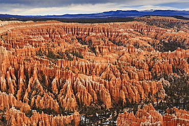 Silent City hoodoos, cloudy winter early morning, Bryce Amphitheatre, Bryce Point, Bryce Canyon National Park, Utah, United States of America, North America