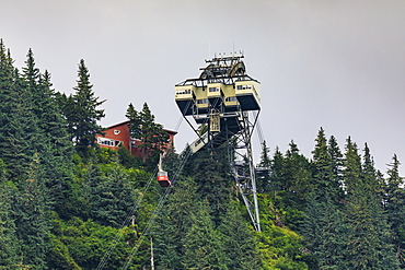 Mount Roberts Tramway cable car approaches top station, surrounded by forest, Juneau, Alaska, United States of America, North America