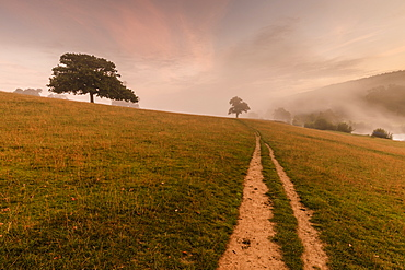 Early Autumn (Fall) mist, dawn, Chatsworth Park, Peak District National Park, Chesterfield, Derbyshire, England, United Kingdom, Europe