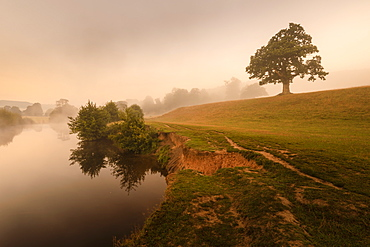 Early Autumn (Fall) mist, dawn, River Derwent, Chatsworth Park, Peak District National Park, Chesterfield, Derbyshire, England, United Kingdom, Europe