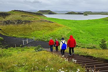 Tourists hiking in rain to the Skutustadagigar pseudo craters, wild flowers, Lake Myvatn, Akureyri, Iceland, Europe