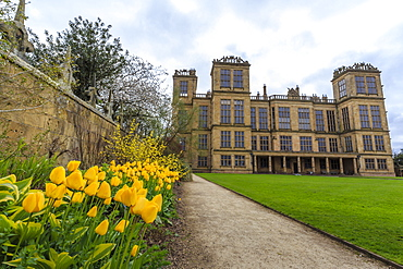 Tulip border, pathway and lawn in spring at Hardwick Hall, near Chesterfield, Derbyshire, England, United Kingdom, Europe
