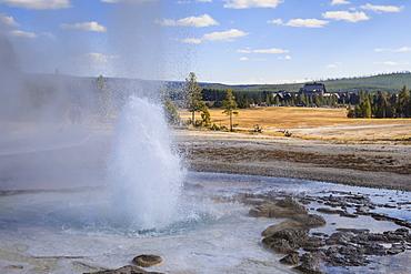 Erupting geyser and Old Faithful Inn, Upper Geyser Basin, Yellowstone National Park, UNESCO World Heritage Site, Wyoming, United States of America, North America