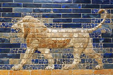 Blue glazed bricks with lion relief, Ishtar Gate (Babylon), Pergamonmuseum (Pergamon Museum), Museum Island, Berlin, Germany, Europe