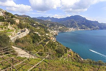 Coastal view above Castiglione di Ravello, towards Minori and Maiori, Costiera Amalfitana (Amalfi Coast), UNESCO World Heritage Site, Campania, Italy, Europe