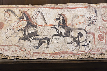 Charioteer and horses, painted tomb slab detail, National Archaeological Museum, Paestum, UNESCO World Heritage Site, Campania, Italy, Europe