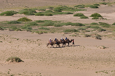 Tourists on Bactrian camel train cross sandy landscape, elevated view in summer, Khongoryn Els sand dunes, Gobi Desert, Mongolia, Central Asia, Asia