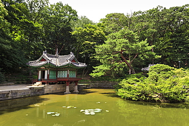 Huwon, The Secret Garden, pavilions around a square lily pond, Changdeokgung Palace in summer, UNESCO World Heritage Site, Seoul, South Korea, Asia
