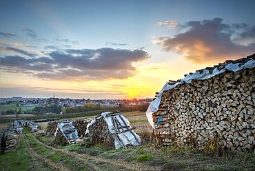 Wood piles near Schoenenbourg, Bas-Rhin, France, Europe