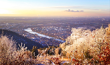 A dreamy view over Rhein Main Valley with Heidelberg City and Neckar River, framed by ice and rime covered trees, Baden-Wurttemberg, Germany, Europe