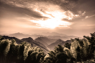 Misty mountains with Bamboo forest in a secluded region of Zhejiang, China, Asia