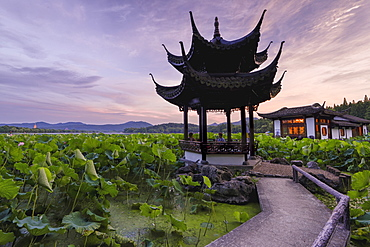 Pavilion, lotus field and zig zag bridge at West Lake, Hangzhou, Zhejiang, China, Asia
