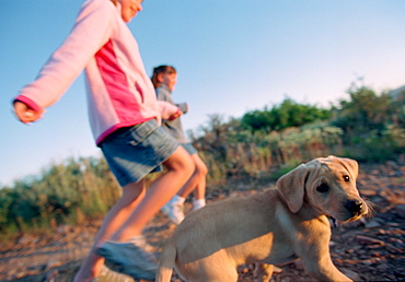 Two Girls Running with Golden Retriever