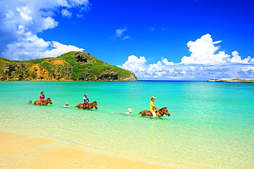 Yonaguni Horses, Okinawa