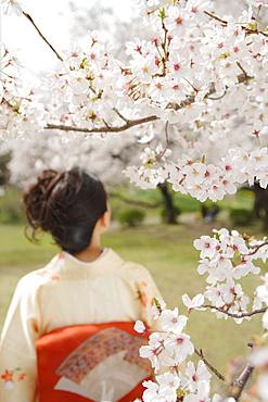Woman Wearing Kimono Standing in Park