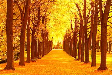 Sanssouci Park, Germany