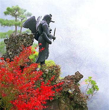 Japanese Long Nosed Goblin, Kanagawa, Japan