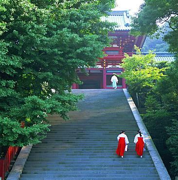 Tsurugaoka Hachimangu, Kanagawa, Japan