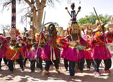 Dogon Dance, Tireli