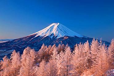 Mt. Fuji, Yamanashi, Japan