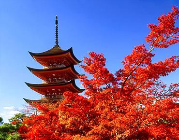 Five-story Pagoda in Itsukushima-jinja, Hiroshima Prefecture, Japan