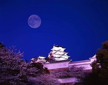 Himeji Castle and Moon, Hyogo, Japan