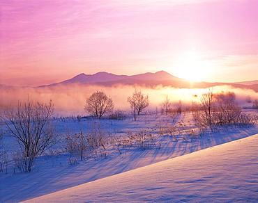 Mt. Asahidake, Hokkaido