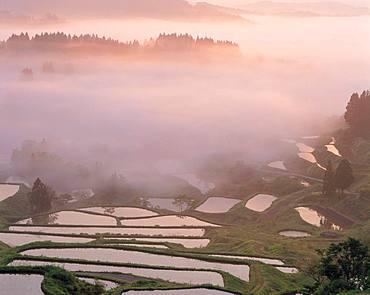 Matsudai Rice Field, Niigata Prefecture
