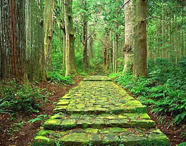 Old Road, Kumano, Mie Prefecture