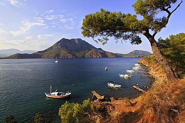 View of pine trees and boats on coats of Adrasan Bay, Kemer, Turkey