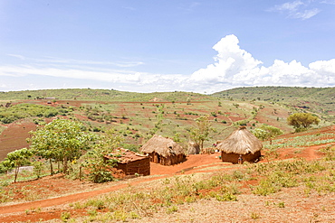 Native huts on the Serengeti, Tanzania, Africa