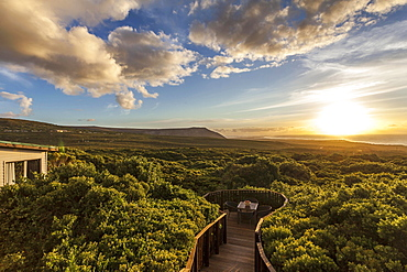 A view of the landscape at sunset (Grootbos-Lodge, Grootbos Nature Reserve, South Africa)