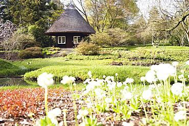 The botanical gardens in Rostock, Germany