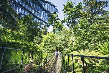 Burmese suspension bridge in the Lost Gardens or Heligan, Eden Project by Tim Smit, Cornwall, England