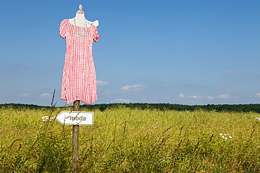 Sign board with female mannequin in field at Langballig, Germany