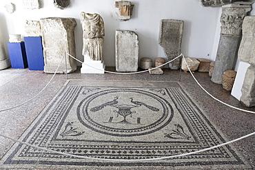 Mosaic floor in Archaeological Museum, Pula, Croatia