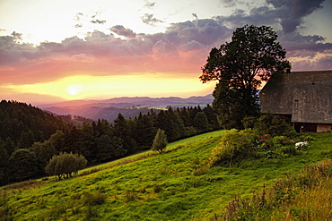 View of Rhine Valley at sunset, Black Forest, Baden-Wurttemberg, Germany