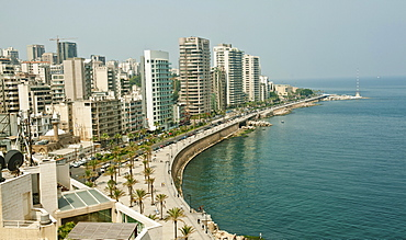 View of Corniche El-Manara skyline at waterfront with palm trees, Beirut, Lebanon
