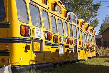 View of parked school buses, Saskatchewan, Canada