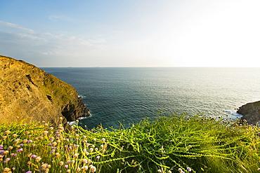 The coast of Gunwalloe (Cornwall, England)