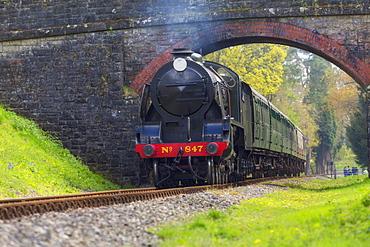 Bluebell Railway, West Sussex, England, United Kingdom, Europe