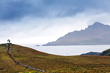 Cape Horn at the far southern end of South America, in the islands of Cape Horn National Park, Patagonia, Chile, South America
