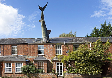The Headington Shark, a rooftop sculpture located on New High Street by John Buckley, Headington, Oxford, Oxfordshire, England, United Kingdom, Europe