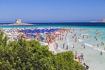 Tourists and beach umbrellas at La Pelosa Beach, Stintino, Asinara National Park, Province of Sassari, Sardinia, Italy, Mediterranean, Europe